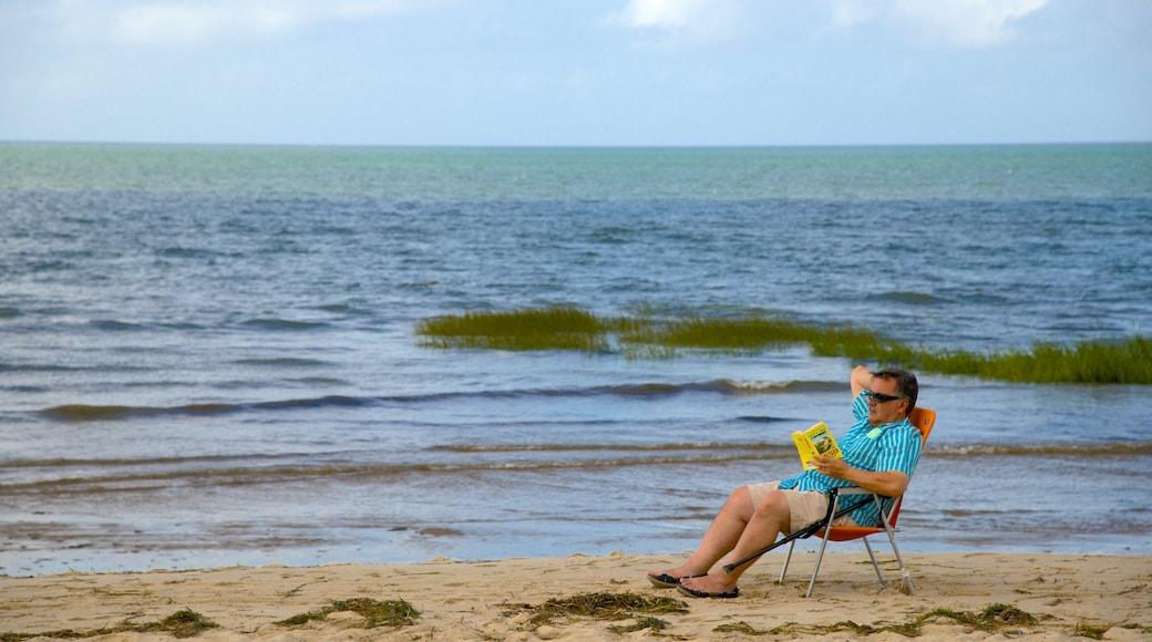Breakwater Beach showing a sandy beach as well as an individual male