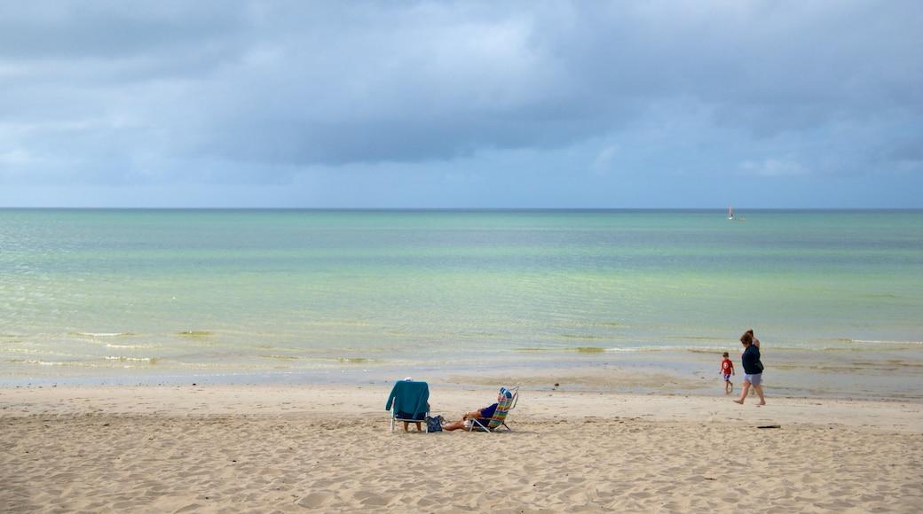 Skaket Beach featuring a beach as well as a family