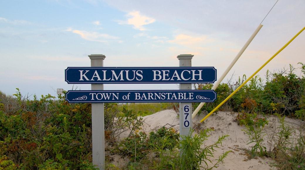 Kalmus Beach que inclui paisagens litorâneas e sinalização