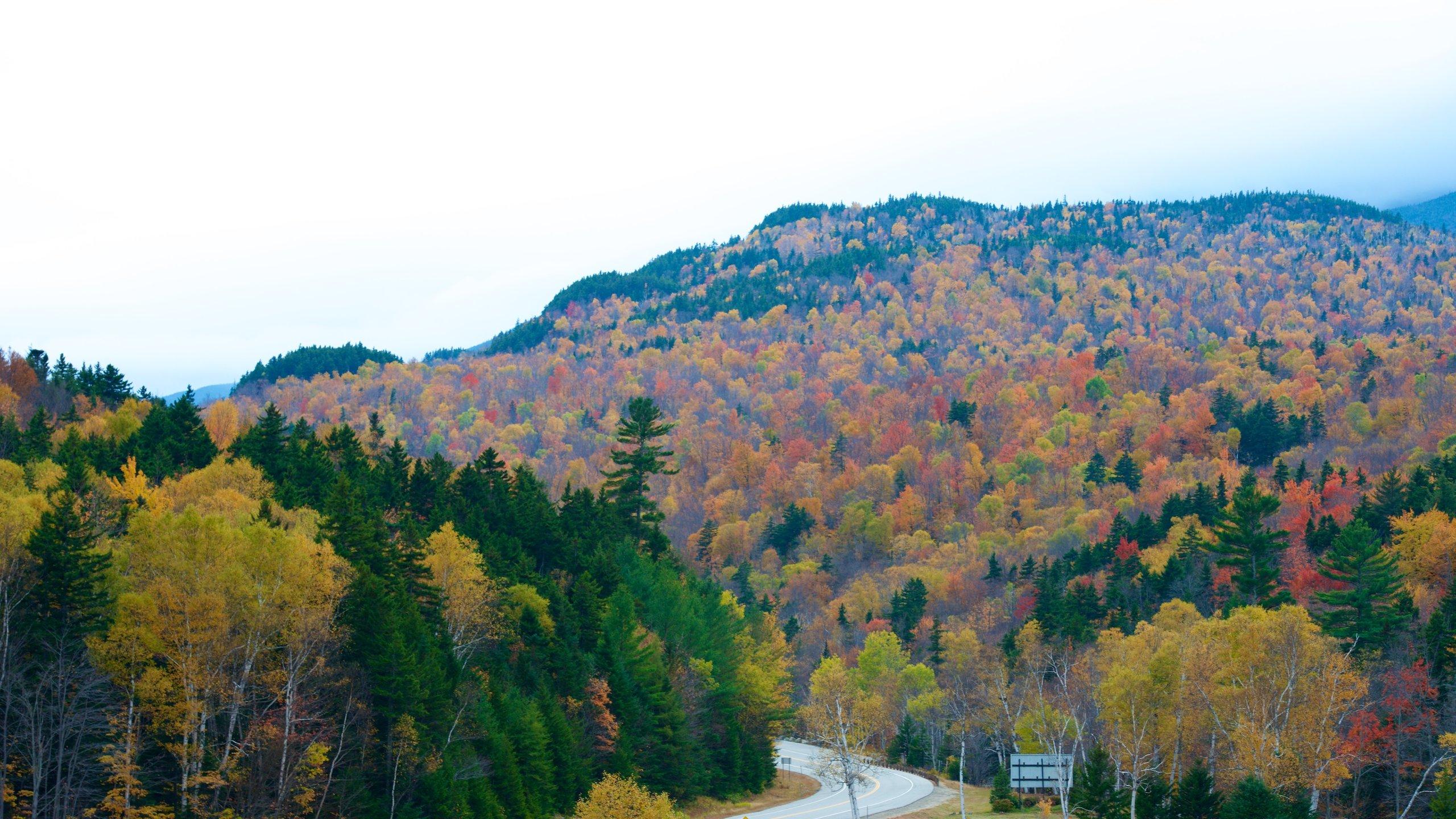 Mount Washington State Park, Randolph, New Hampshire, United States of America