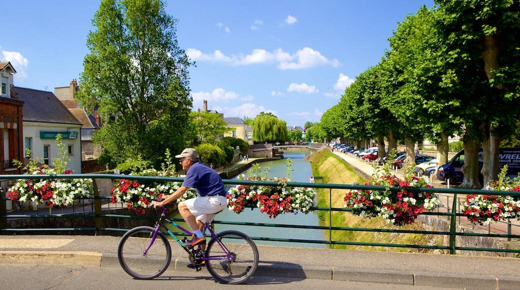 Montargis mostrando fiume o ruscello, ponte e fiori