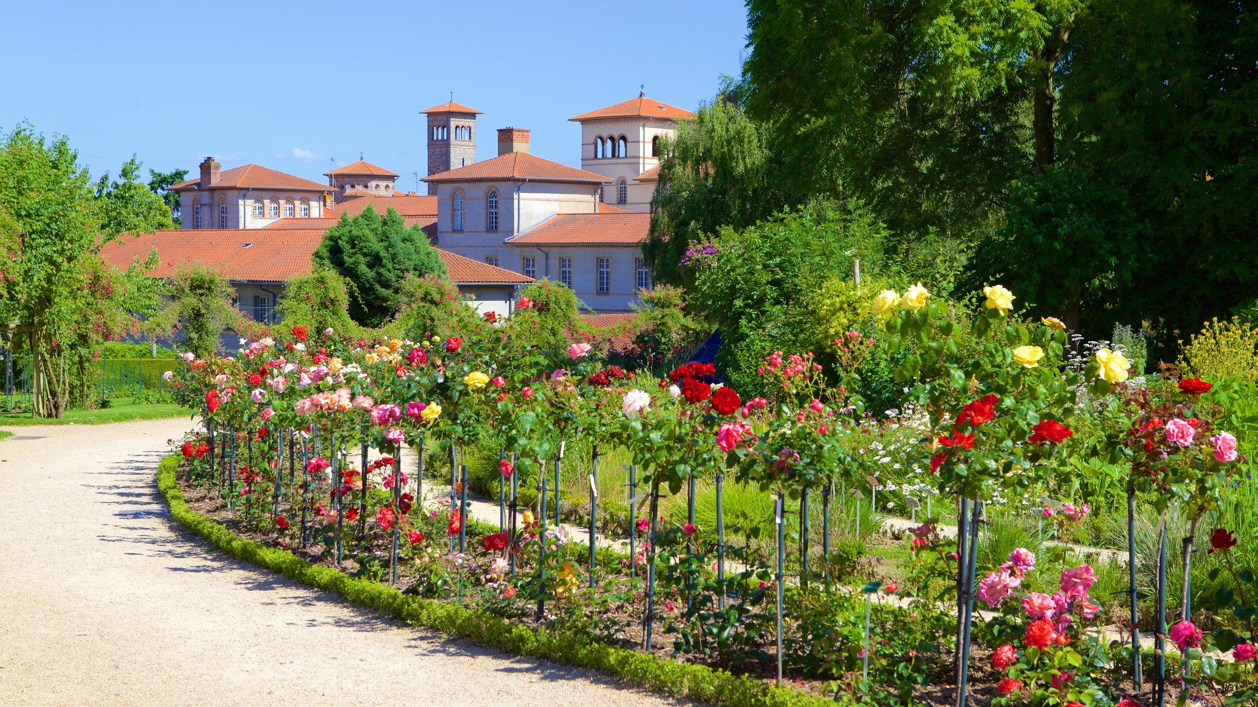 Thabor Botanic Gardens, Rennes, Ille-et-Vilaine, Frankrijk