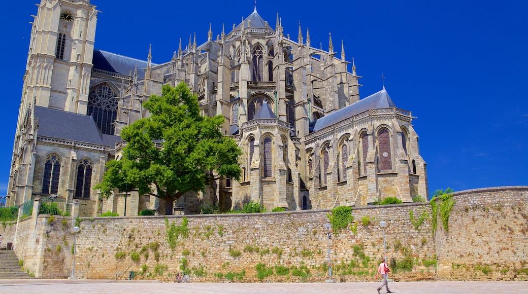 Le Mans montrant patrimoine historique, église ou cathédrale et patrimoine architectural