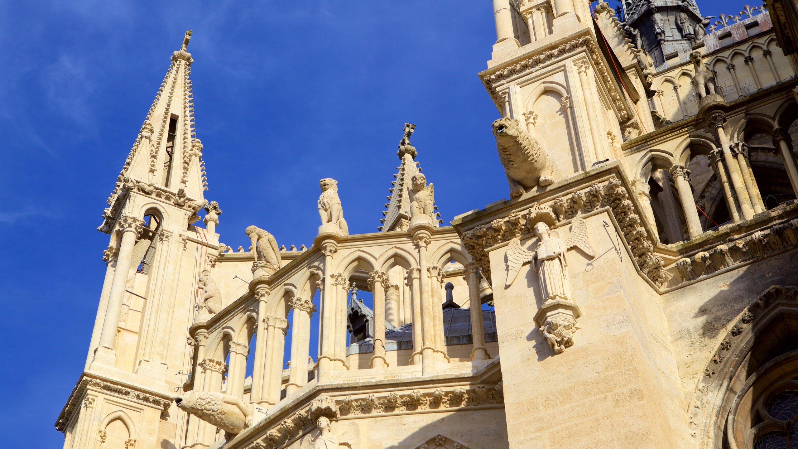 Erklimmen Sie die Türme dieser bemerkenswerten Kathedrale aus dem 13. Jahrhundert, die zu den bekanntesten religiösen Gebäuden in Frankreich gehört.