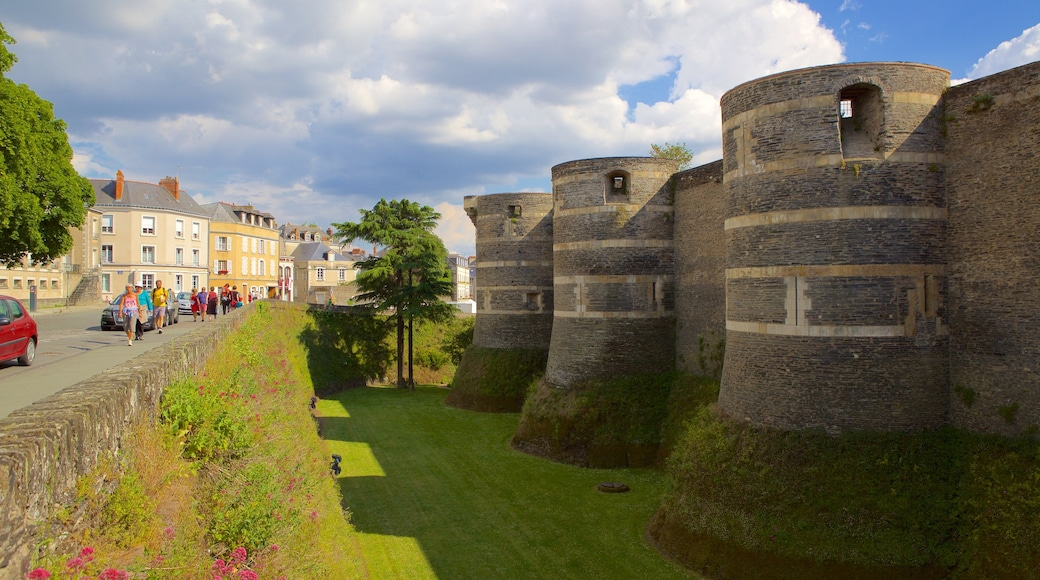Chateau d\'Angers showing heritage elements and a park