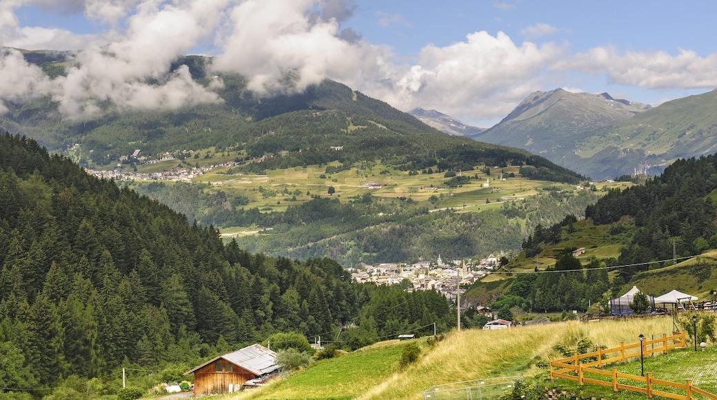 Bormio som inkluderer rolig landskap og fjell