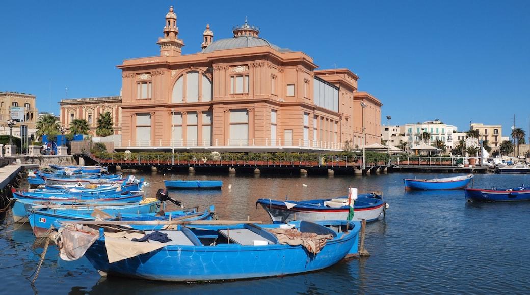 Bari che include vista della costa, località costiera e giro in barca