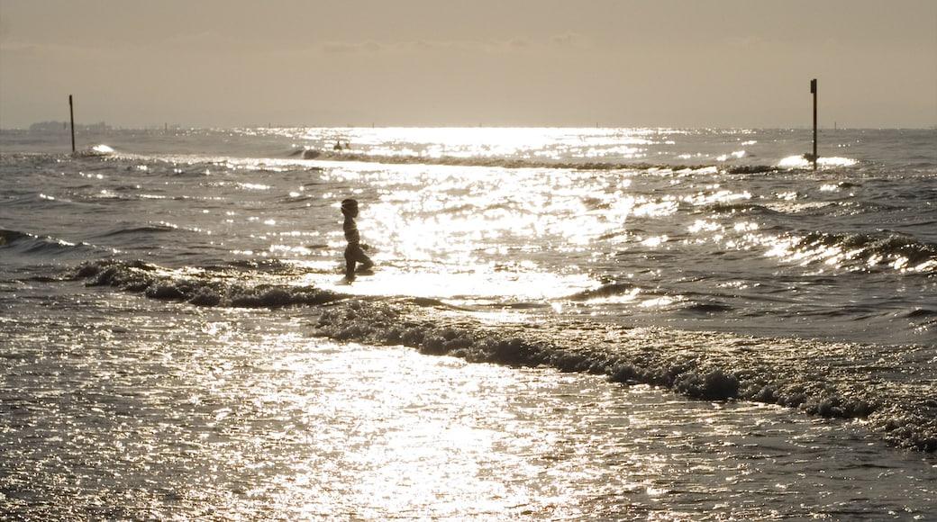 Lignano Sabbiadoro mostrando vista della costa