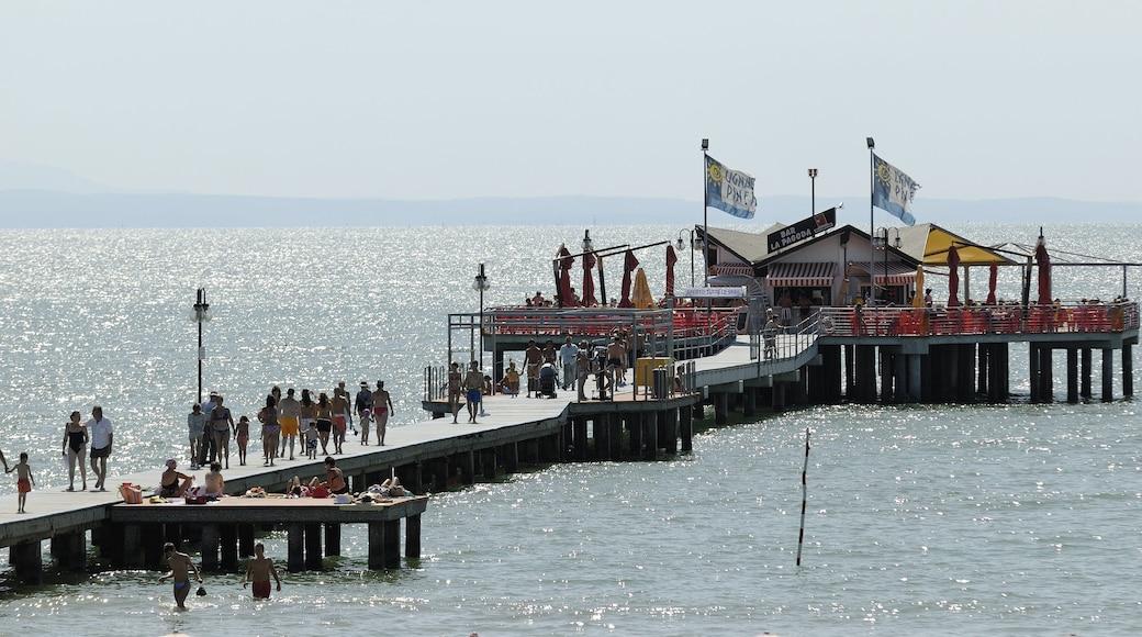 Lignano Sabbiadoro che include vista della costa