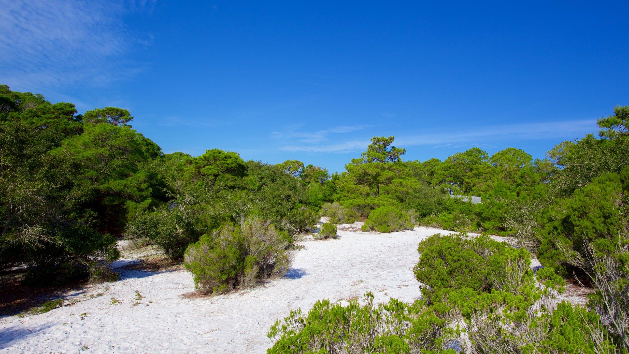Lower Grand Lagoon, Florida, USA