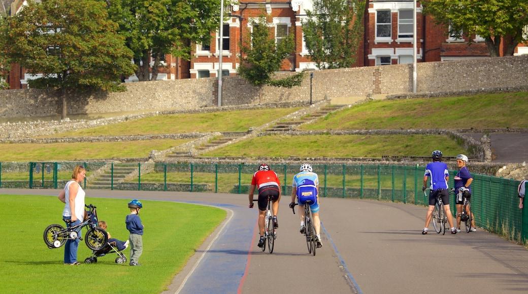 Preston Park welches beinhaltet Park und Straßenradfahren