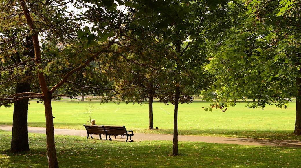 Preston Park welches beinhaltet Garten