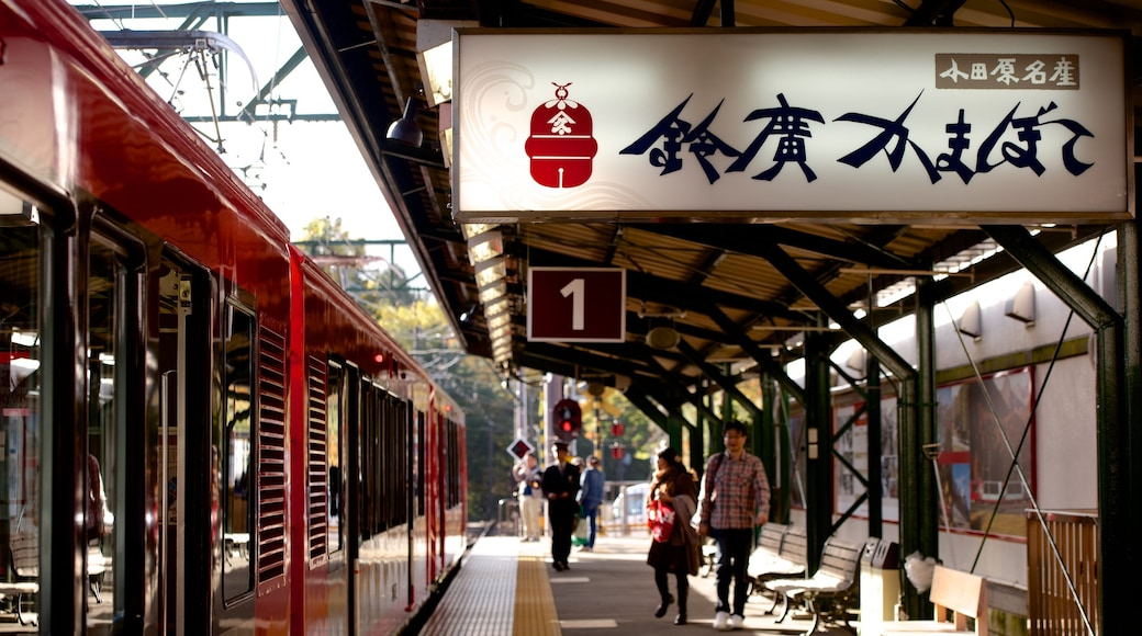 Ashigarashimo featuring railway items