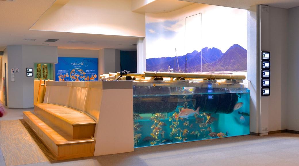 Miyajima Aquarium featuring interior views