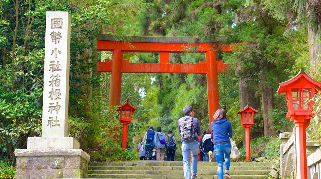 箱根神社 其中包括 傳統元素 以及 一對夫婦