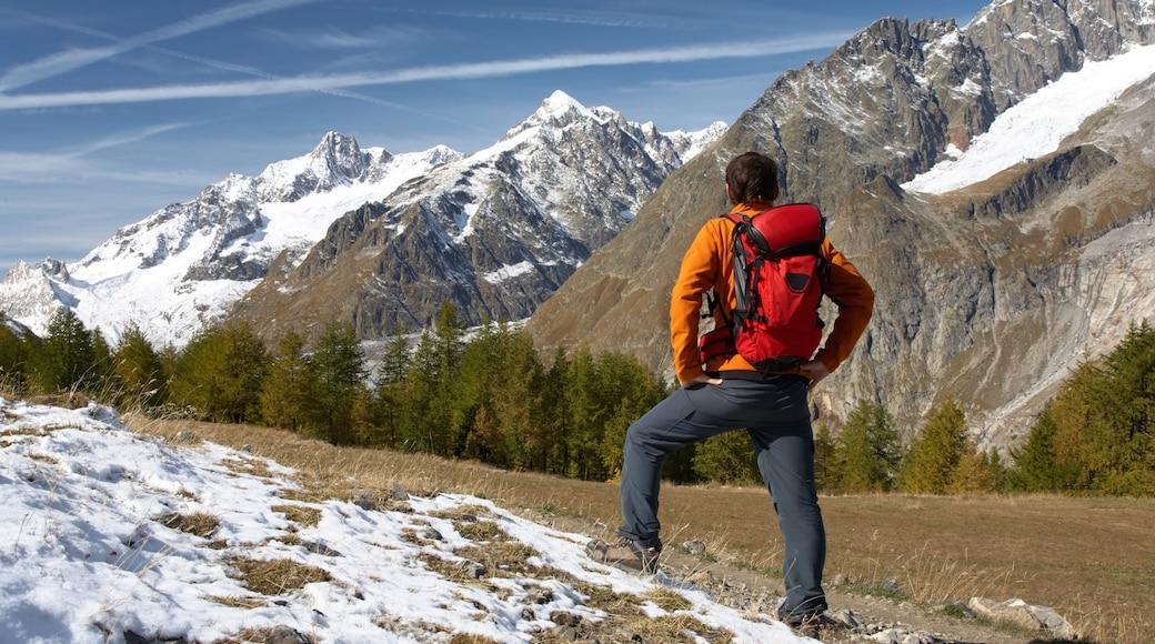 Courmayeur montrant randonnée ou marche à pied, montagnes et neige