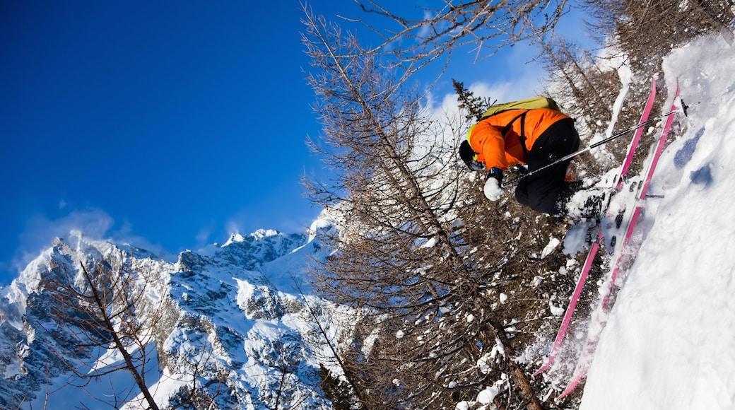 Courmayeur welches beinhaltet Berge, Schnee und Skifahren
