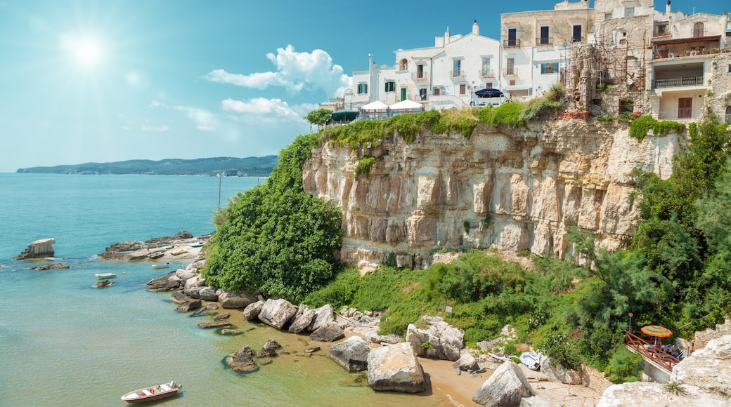 Vieste featuring rugged coastline, a gorge or canyon and a coastal town