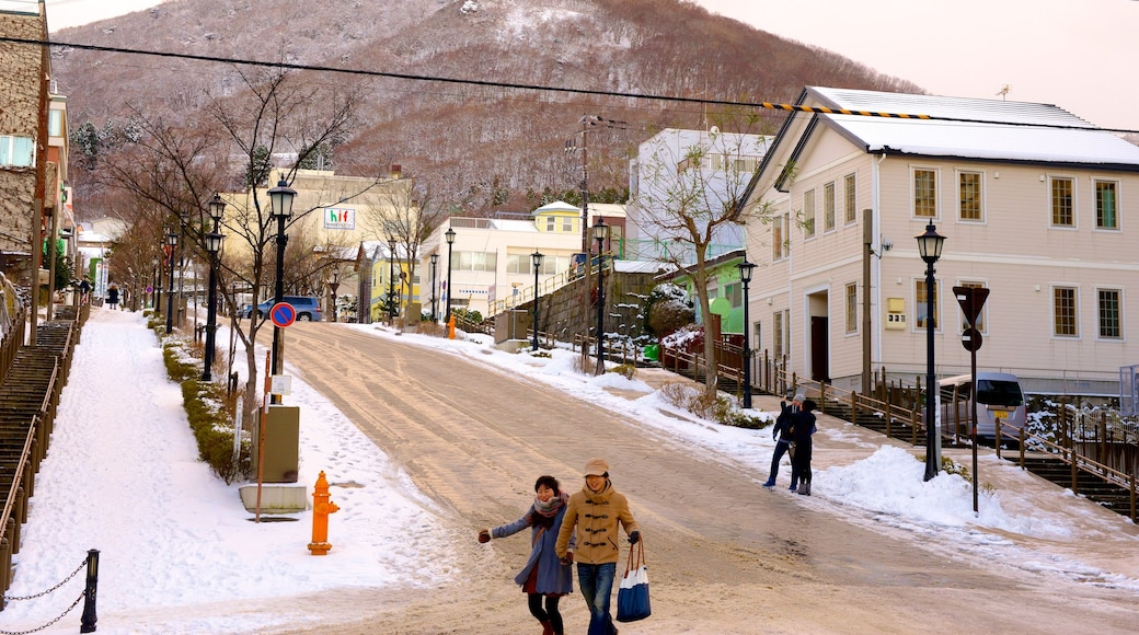 Hakodate featuring street scenes and snow as well as a small group of people