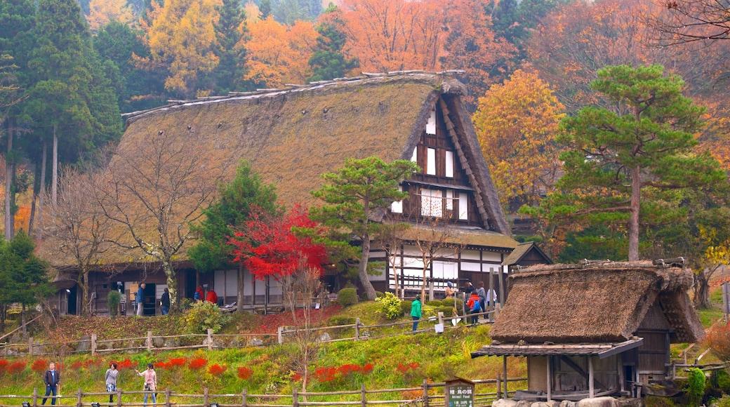Hida Minzoku Mura Folk Village which includes a house and autumn colours
