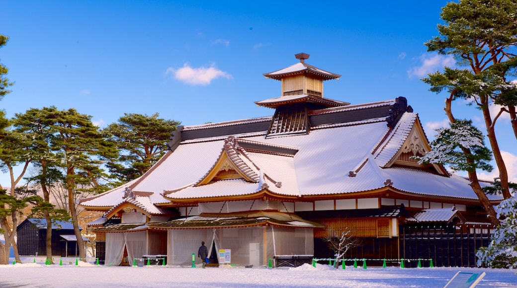 Fort Goryokaku which includes snow and a temple or place of worship