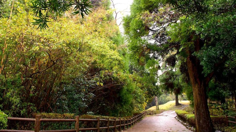 Kiyomizugaoka Park which includes a garden
