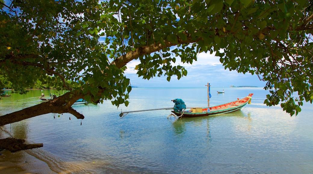 Bo Phut Beach toont kajakken of kanoën en algemene kustgezichten