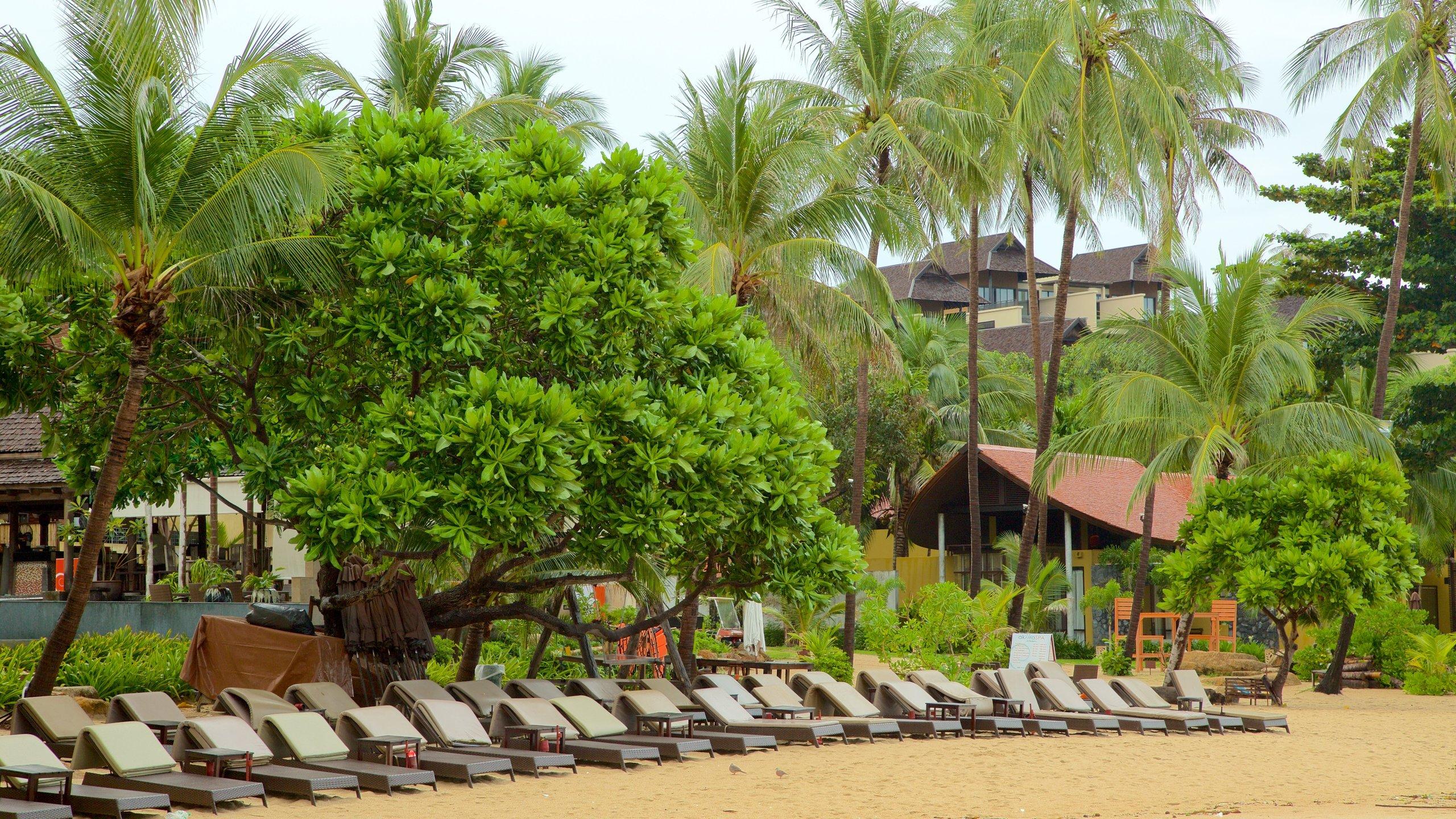 Lamai, Koh Samui, Surat Thani Province, Thailand