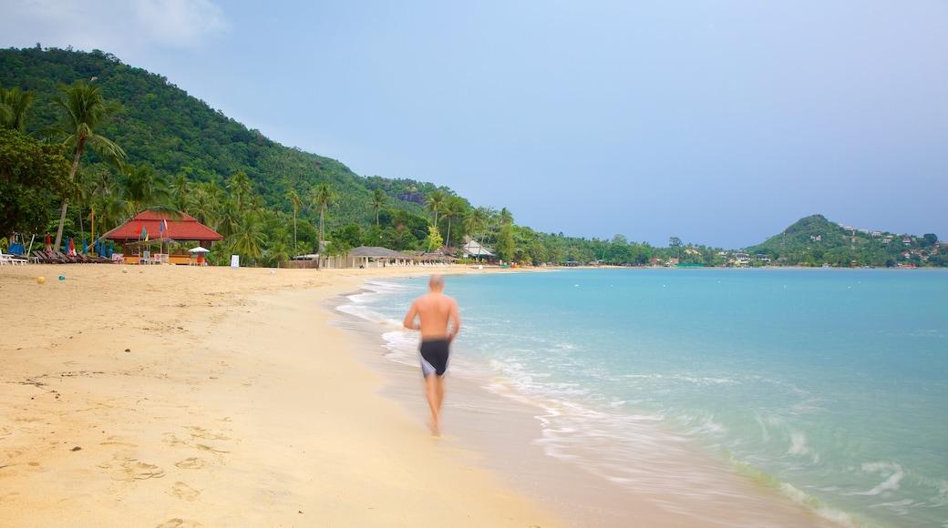 Lamai Beach showing a sandy beach as well as an individual male