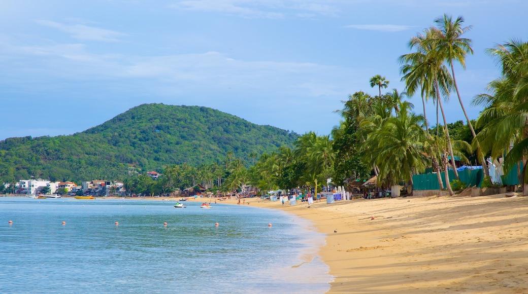 Bo Phut Beach toont een zandstrand en bergen