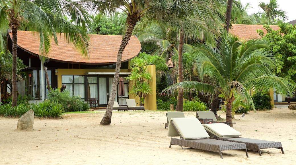 Silver Beach inclusief algemene kustgezichten en een luxueus hotel of resort