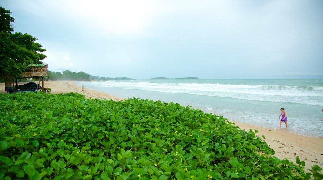 Silver Beach inclusief een strand