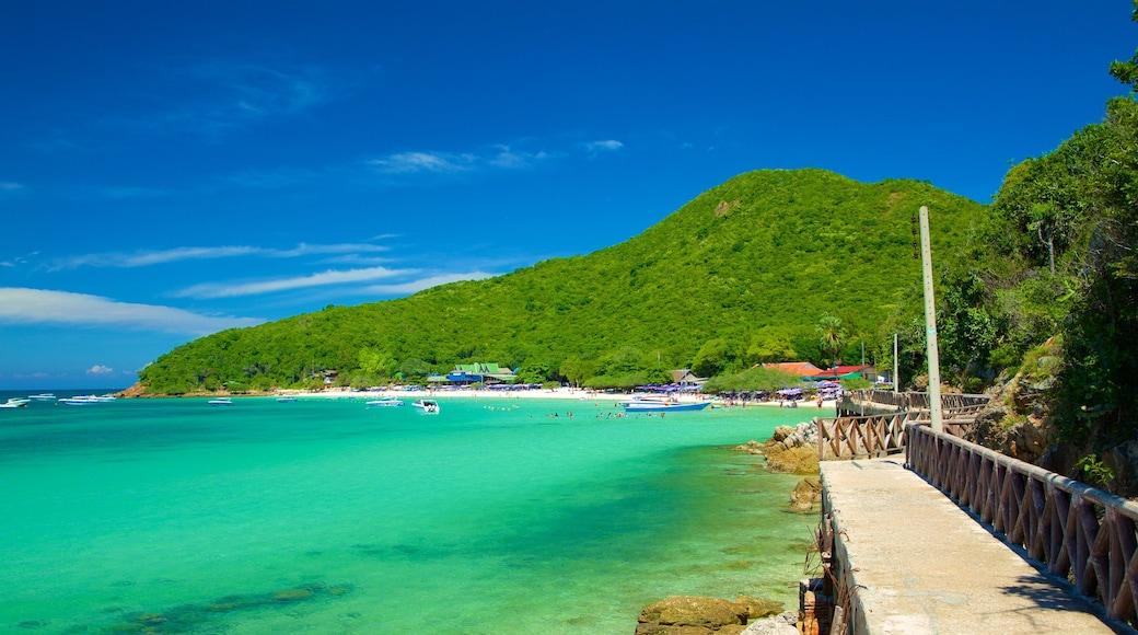 Koh Lan featuring general coastal views and mountains