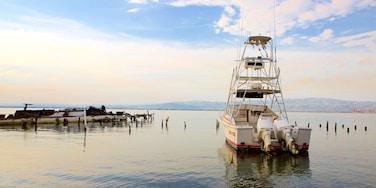 Port Royal showing boating, general coastal views and a bay or harbor