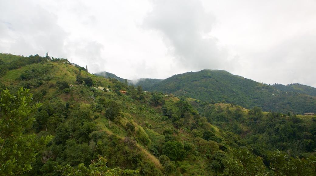 Irish Town featuring mountains