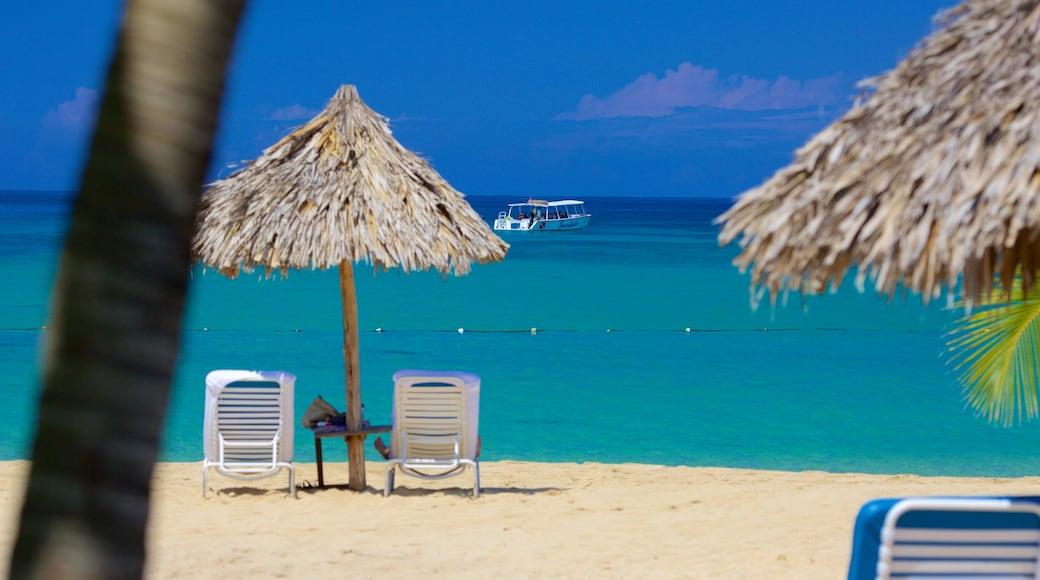 Ocho Rios featuring tropical scenes, a luxury hotel or resort and general coastal views