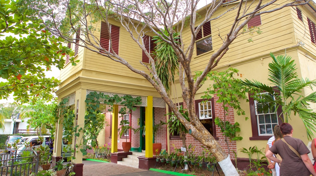 Bob Marley Museum which includes a house