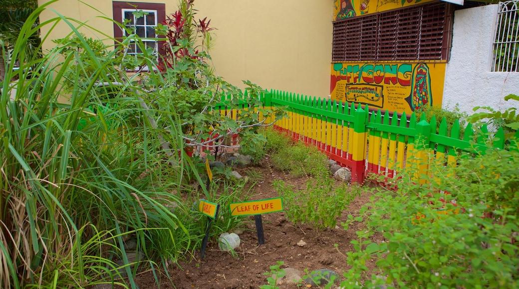 Bob Marley Museum showing a garden
