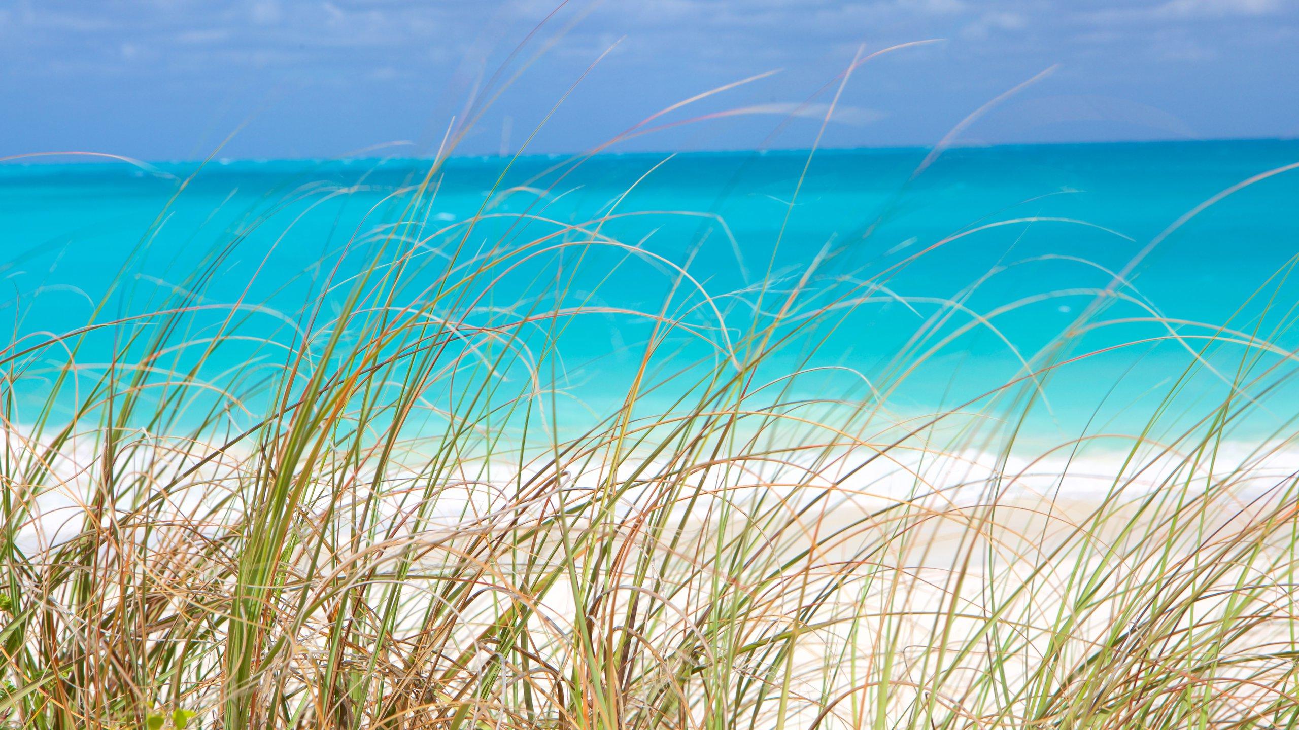 Little Exuma Island, Exuma, Bahamas