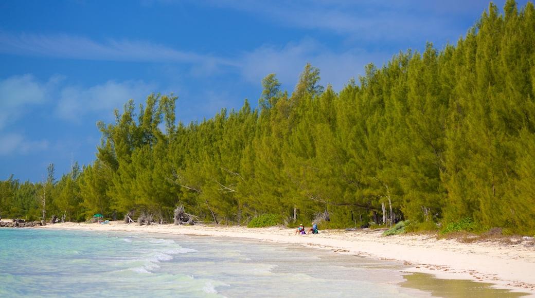 Barbary Beach que inclui uma praia de areia