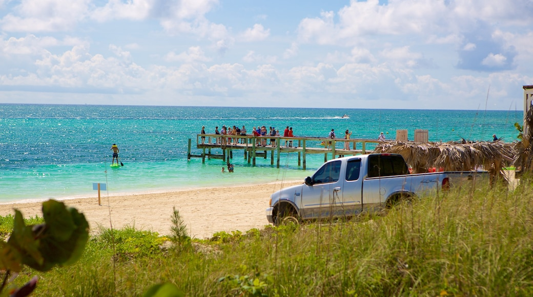 Taino Beach which includes general coastal views and a beach as well as a large group of people