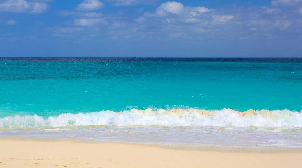 Cabbage Beach featuring a beach