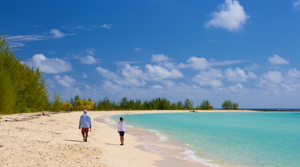 Xanadu Beach que inclui uma praia de areia e cenas tropicais