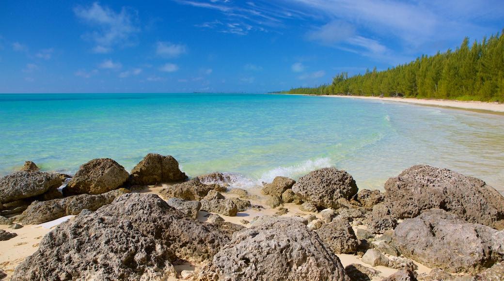 Barbary Beach mostrando litoral acidentado e uma praia de areia