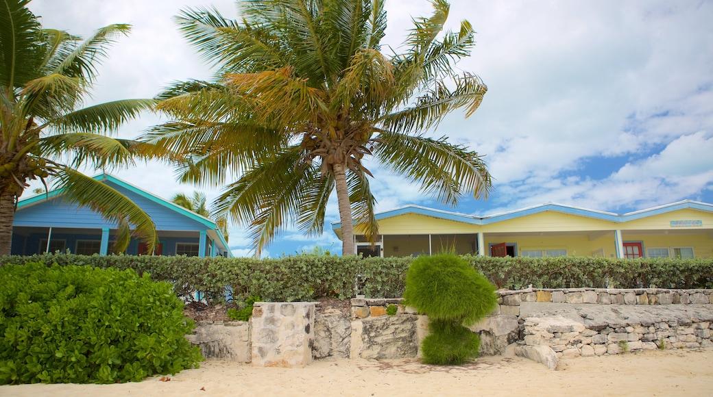 Palm Bay Beach toont algemene kustgezichten