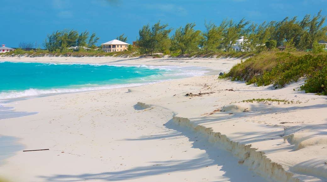 Tropic of Cancer Beach which includes a sandy beach