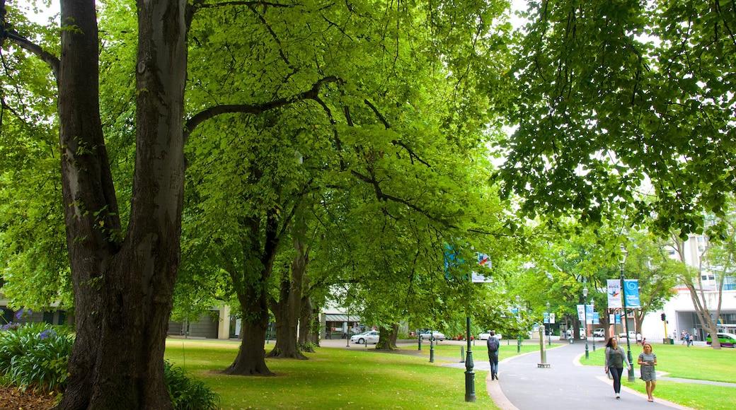 Otago Museum featuring a park
