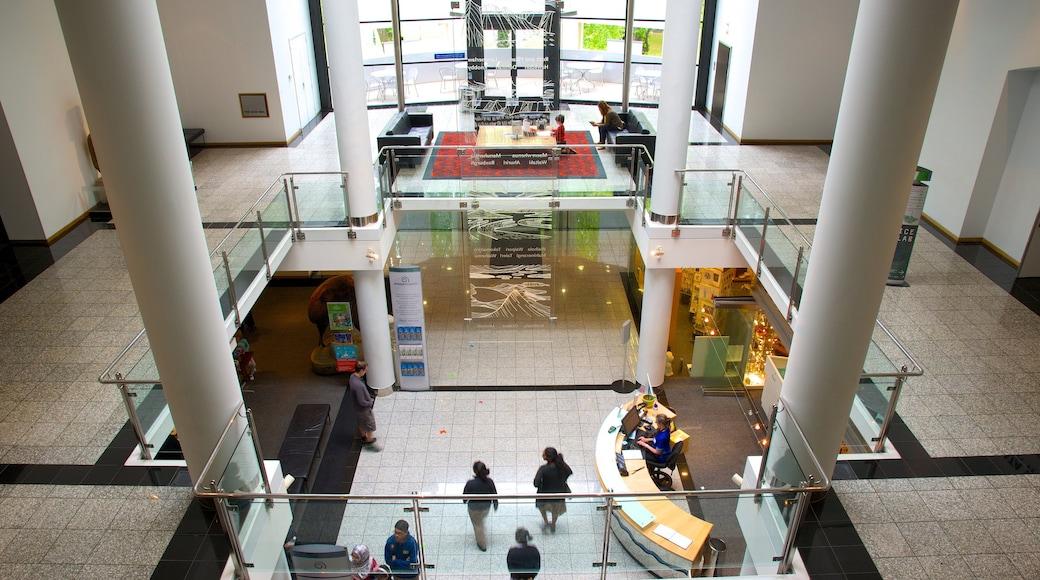 Otago Museum which includes interior views