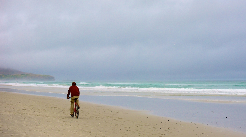 St. Clair Beach showing a beach and cycling as well as an individual male