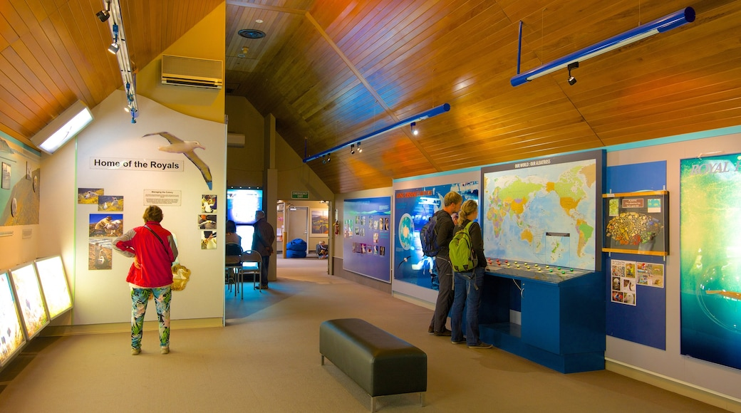 Royal Albatross Centre which includes interior views as well as a small group of people
